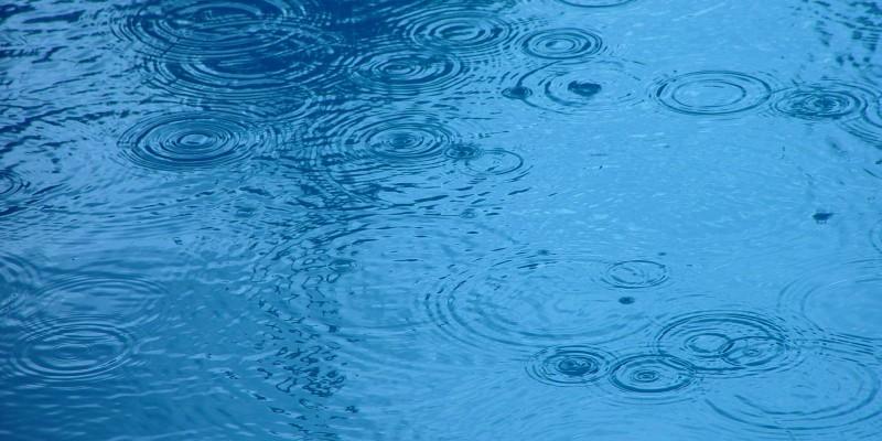Raindrop ripples on a pond